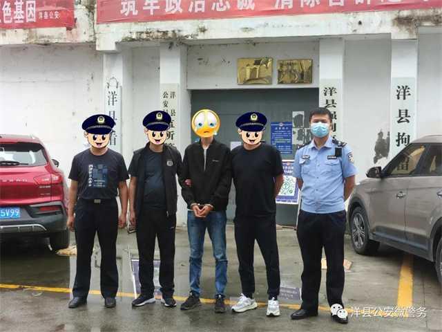 洋县偷牛.jpg